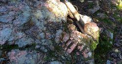 Dense pegmatite swarm a mark of Zoro